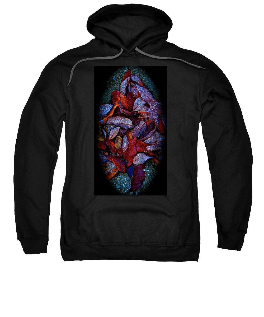 Fall Sweatshirt featuring the photograph Morning Dew by Tim G Ross