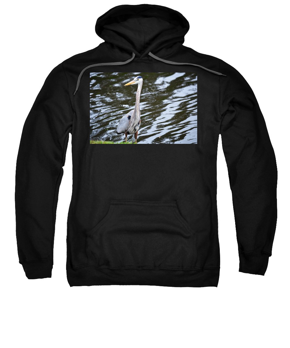 Florida Sweatshirt featuring the photograph Pond's Edge by Linda Kerkau