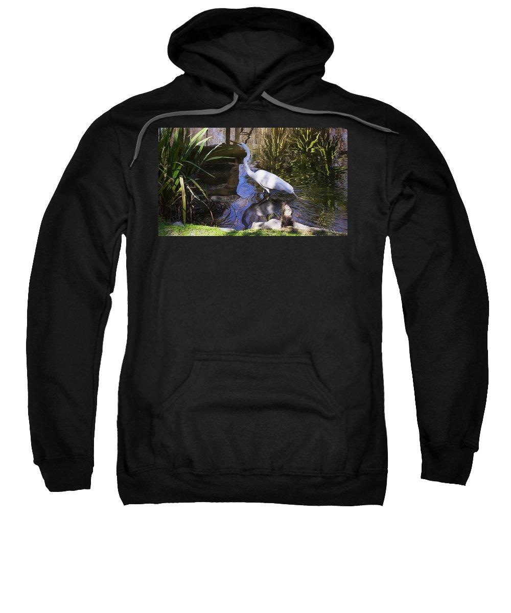 Reflections Sweatshirt featuring the photograph Reflections by Mechala Matthews