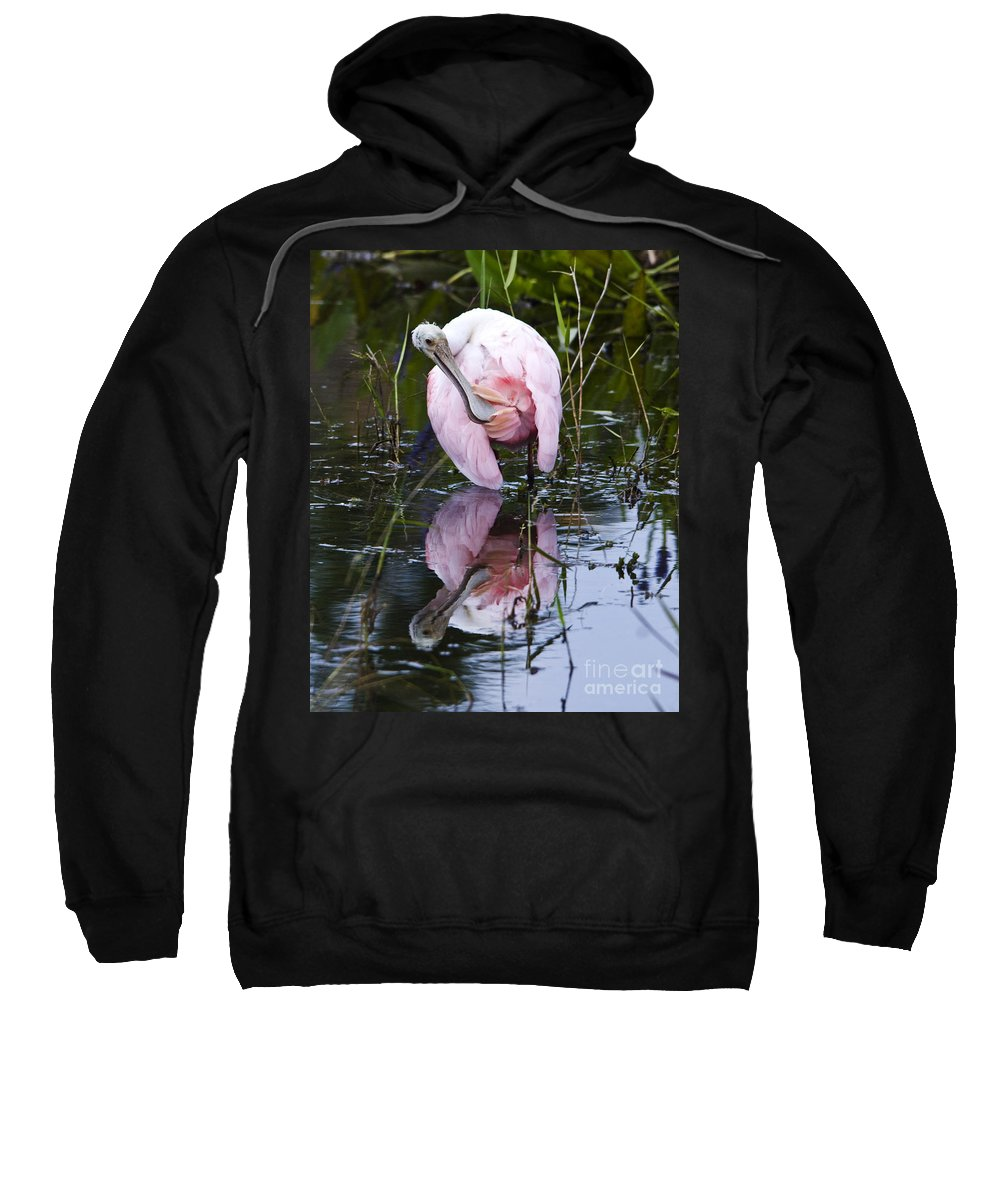 Roseate Spoonbill Sweatshirt featuring the photograph Roseate Spoonbill No.3 by John Greco