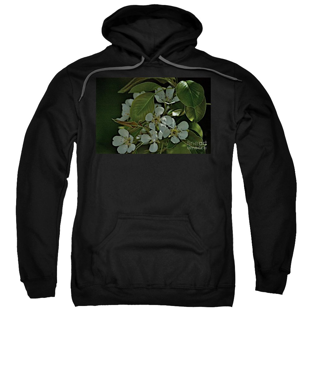 Pear Blossoms Sweatshirt featuring the photograph Spring by Joseph Yarbrough
