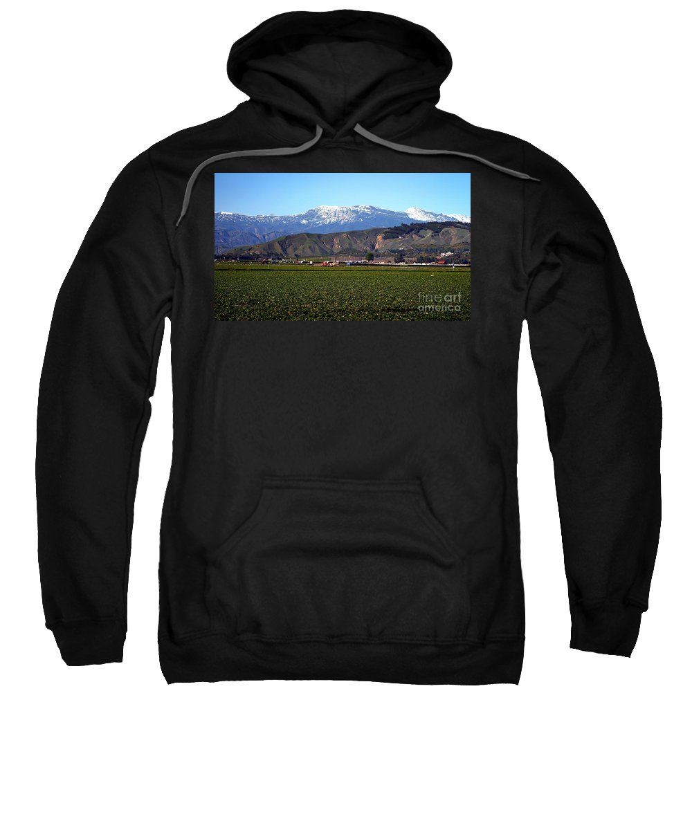 Agriculture Sweatshirt featuring the photograph Strawberry Field by Henrik Lehnerer
