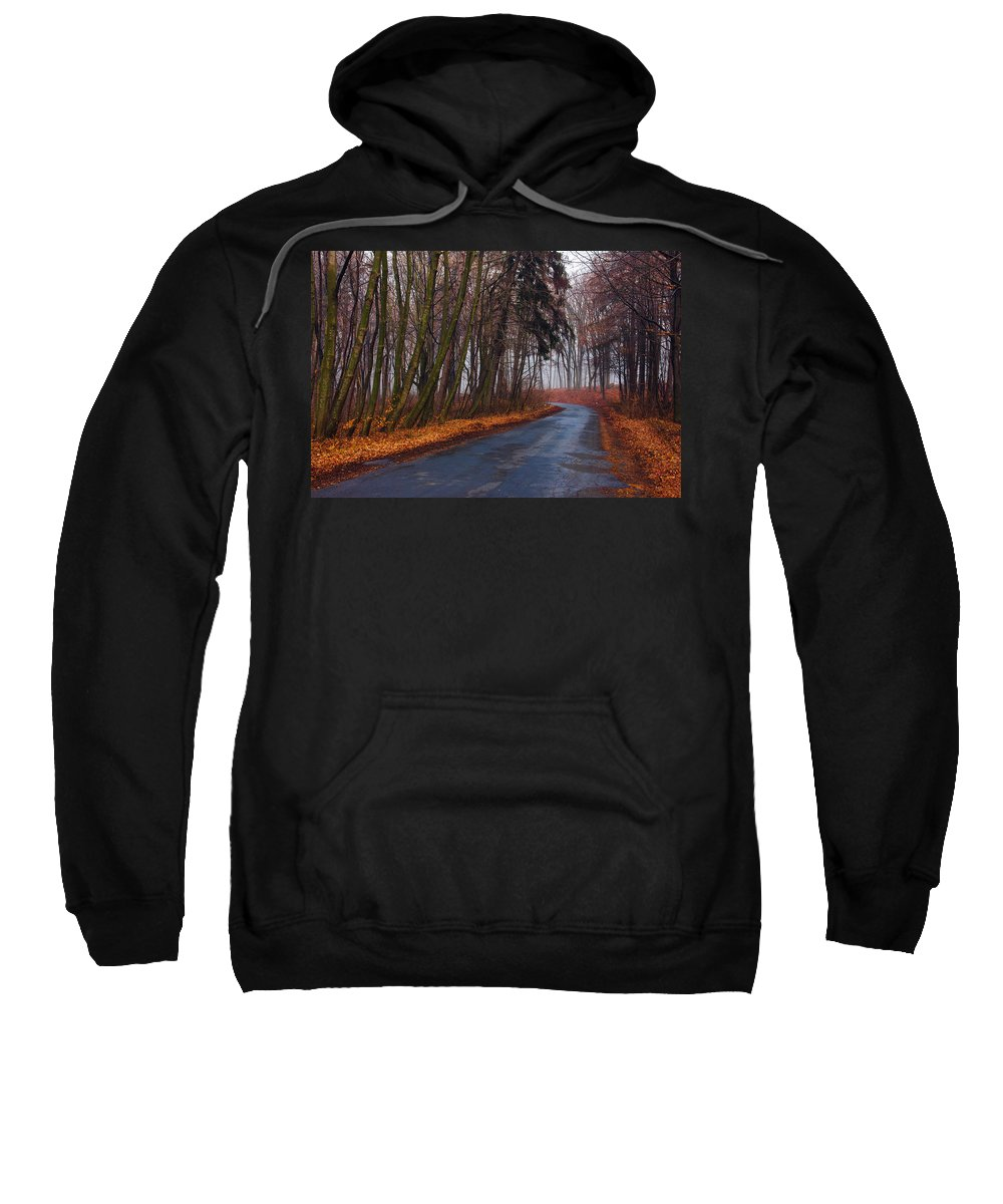 Road Sweatshirt featuring the photograph Winter Forest by Pati Photography