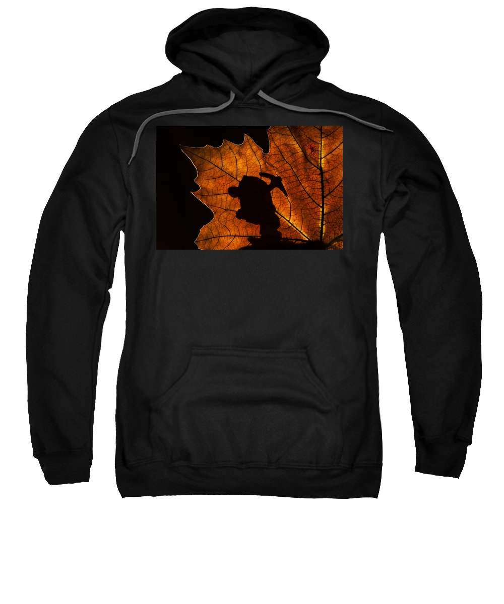 Dwarf Sweatshirt featuring the photograph 131114p316 by Arterra Picture Library