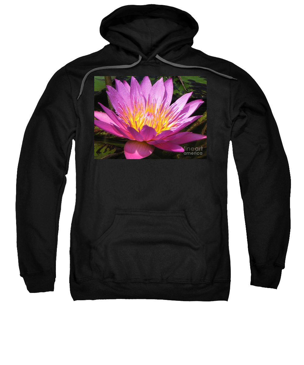 Lilly Sweatshirt featuring the photograph It by Amanda Barcon