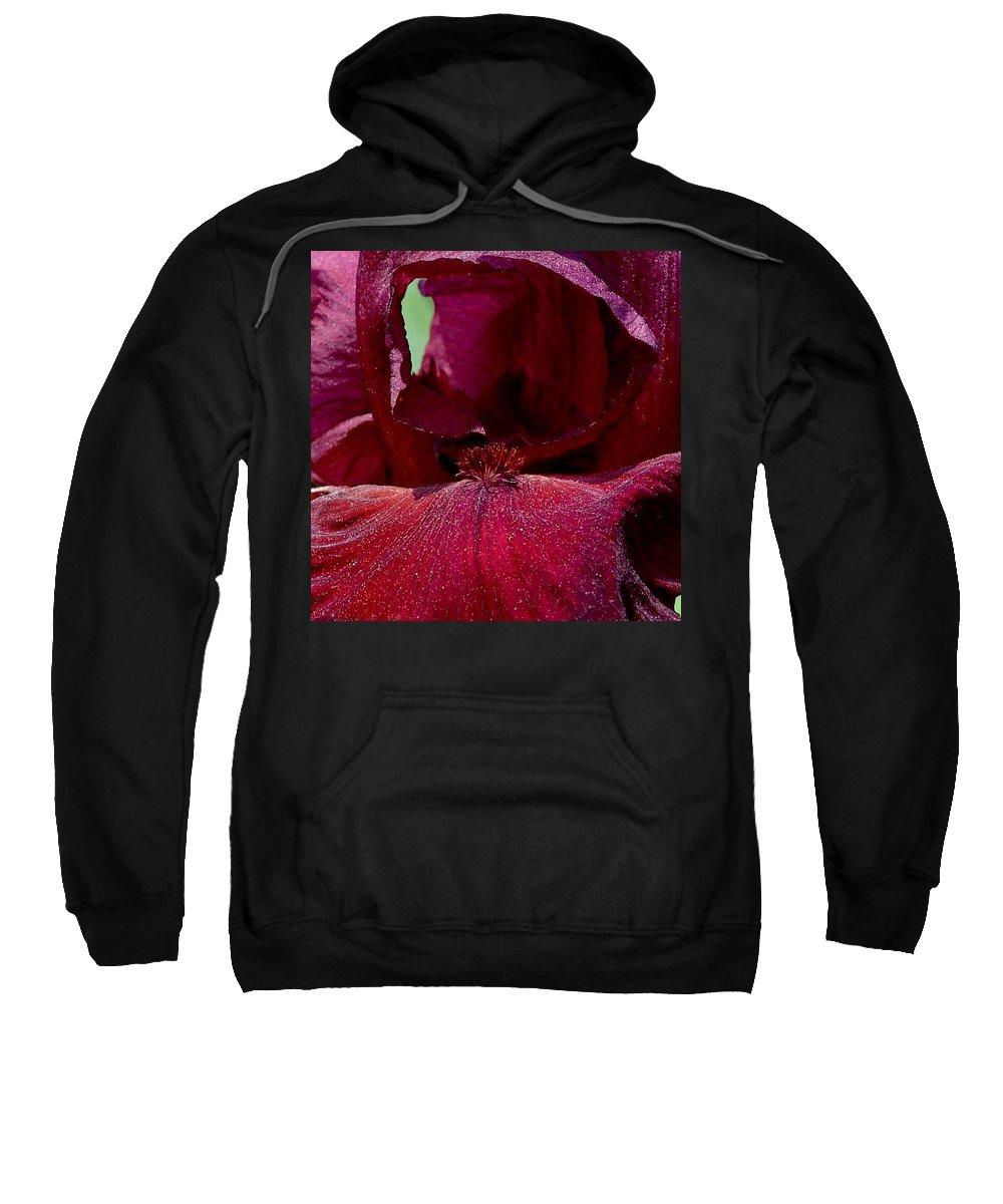 Maroon Sweatshirt featuring the photograph Maroon Iris 2 by David Hohmann
