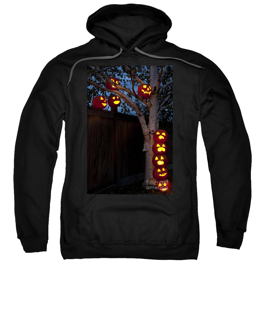 31st Sweatshirt featuring the photograph Pumpkin Escape Over Fence by Jim Corwin