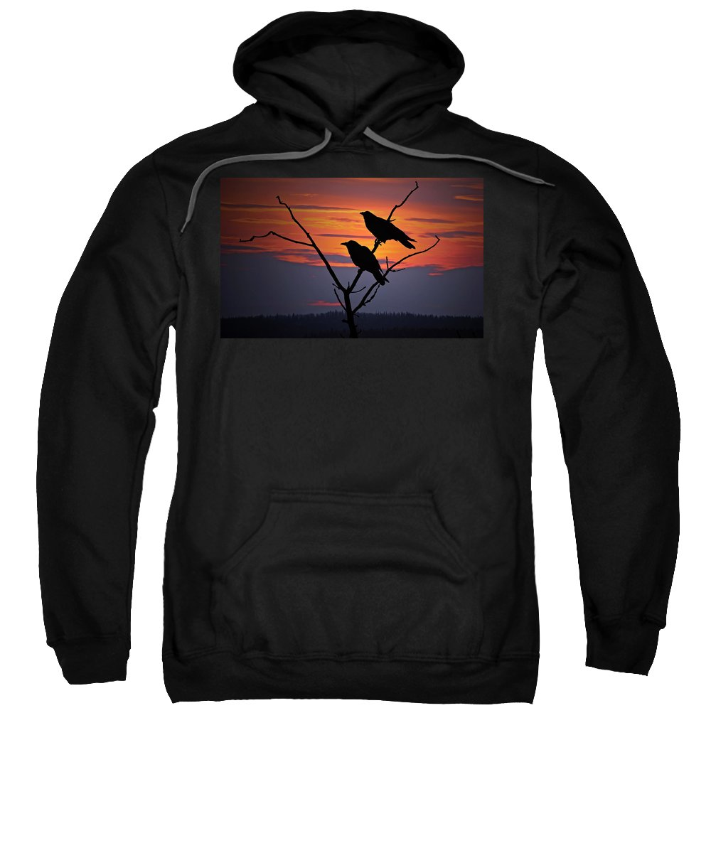 Raven Sweatshirt featuring the photograph 2 Ravens by Ron Day