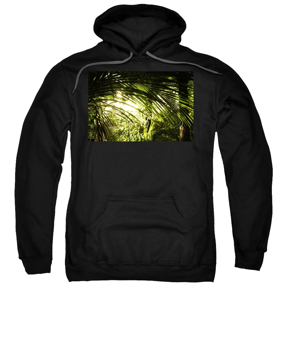 Bush Sweatshirt featuring the photograph Tropical Forest by Les Cunliffe