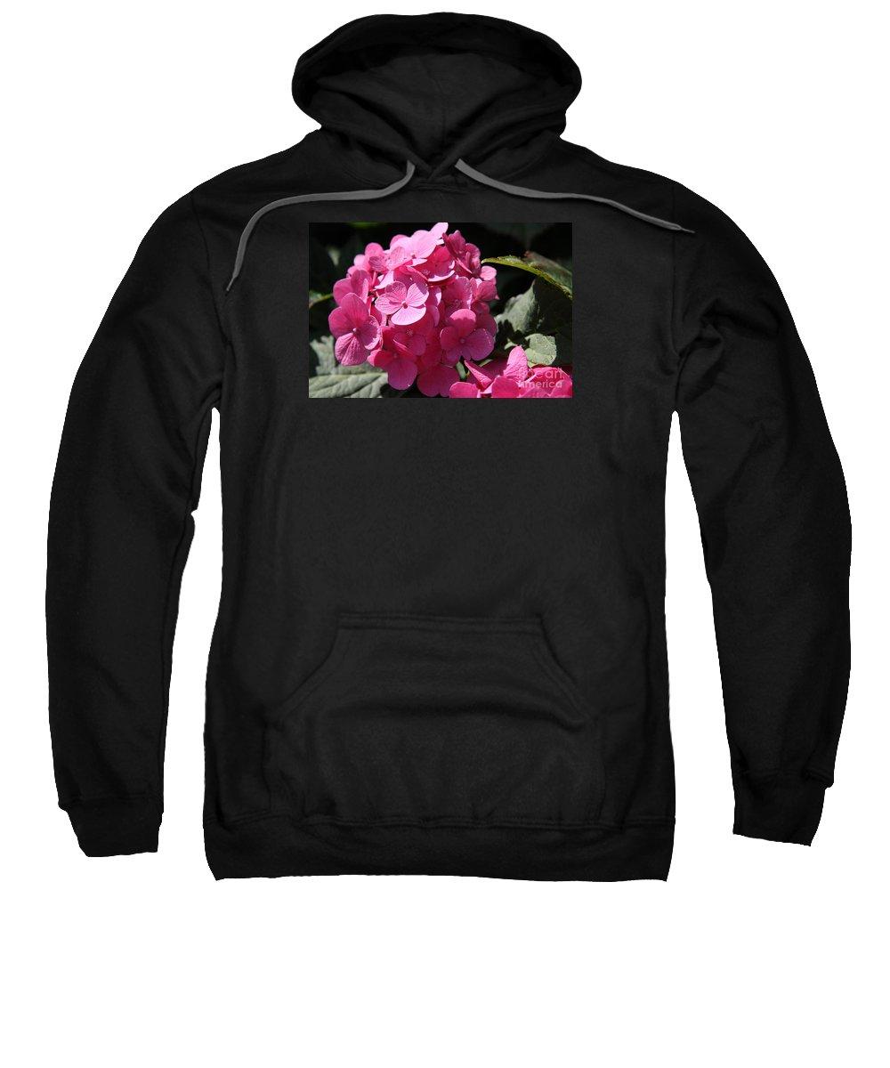 Hydrangea Sweatshirt featuring the photograph Hydrangea by Christiane Schulze Art And Photography