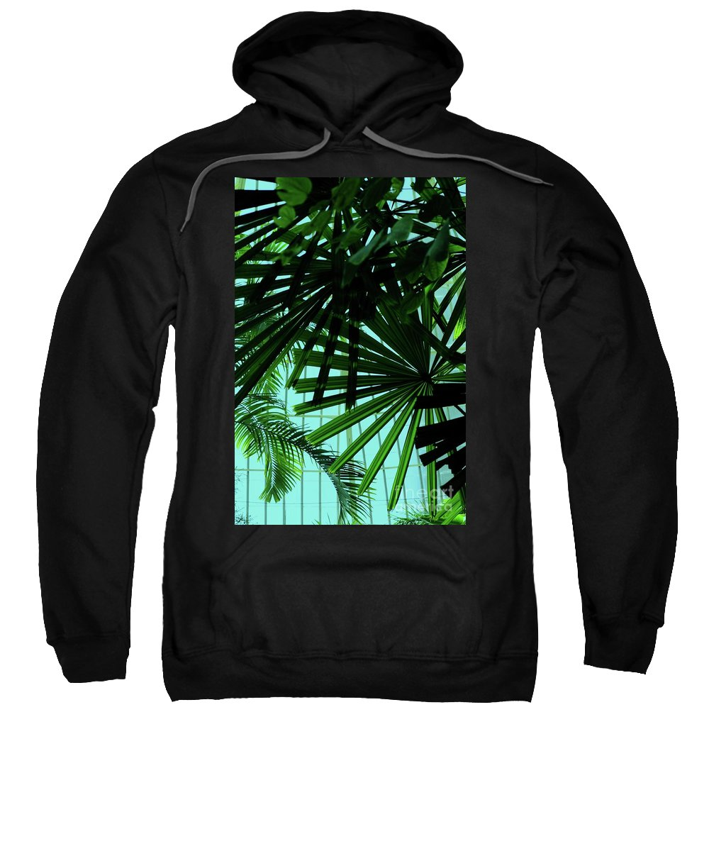 Palm Sweatshirt featuring the photograph Palm Trees by Kathleen Struckle