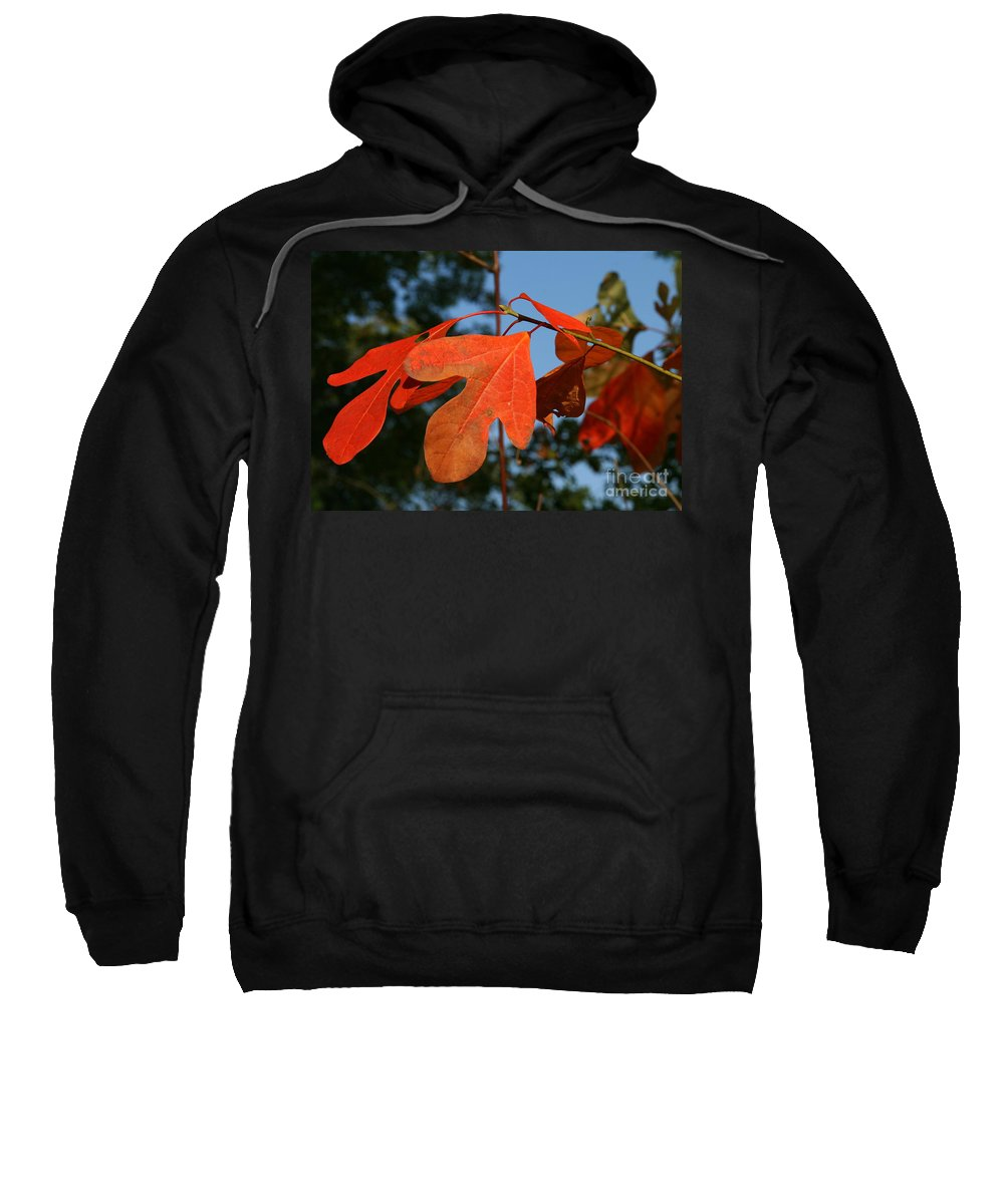 Leaf Sweatshirt featuring the photograph Red Autumn by Neal Eslinger