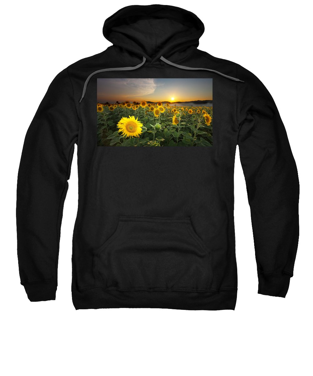Summer Sweatshirt featuring the photograph Summer Morning by Mircea Costina Photography