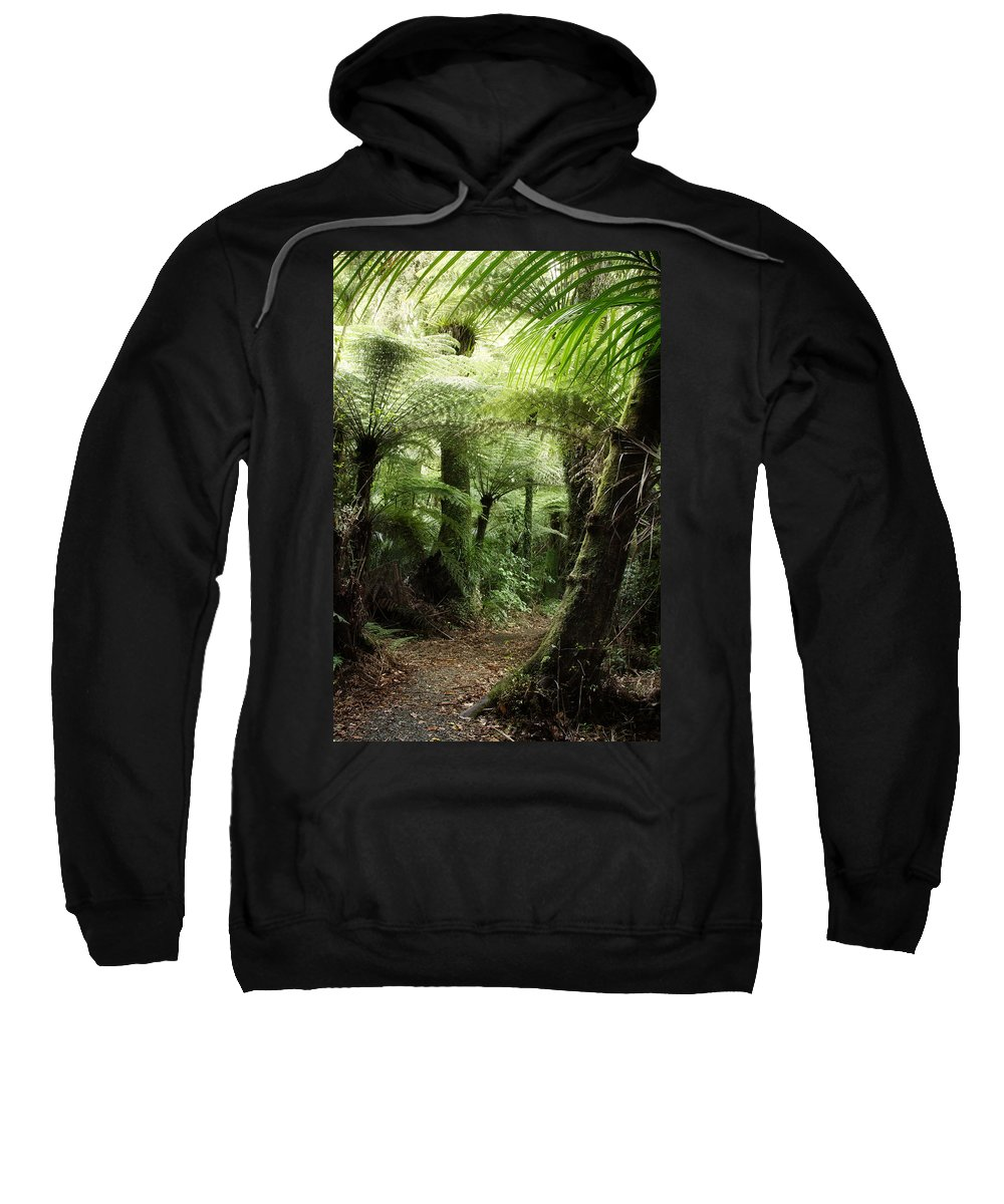 Forest Sweatshirt featuring the photograph Jungle 2 by Les Cunliffe