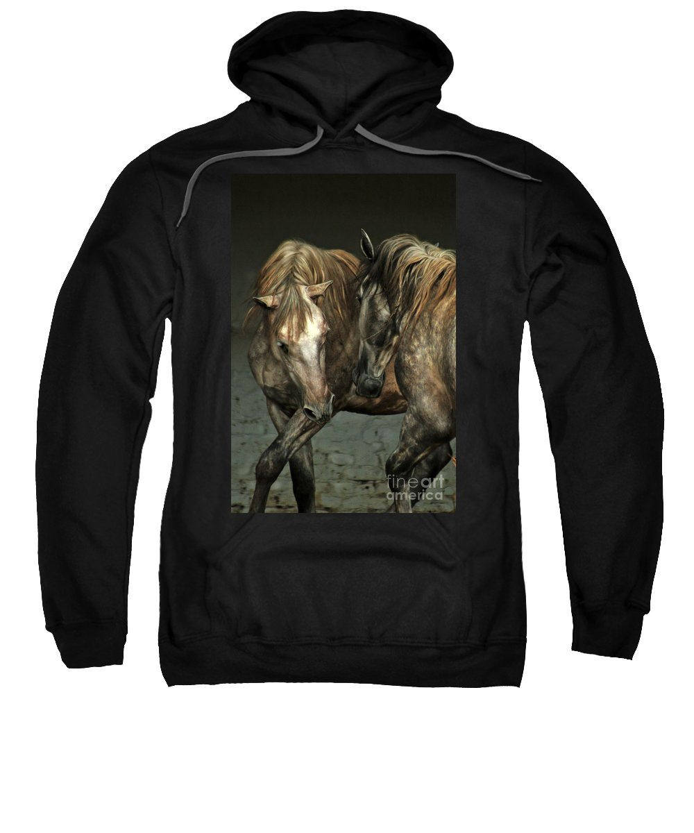 Horse Sweatshirt featuring the photograph Flamenco by Angel Ciesniarska