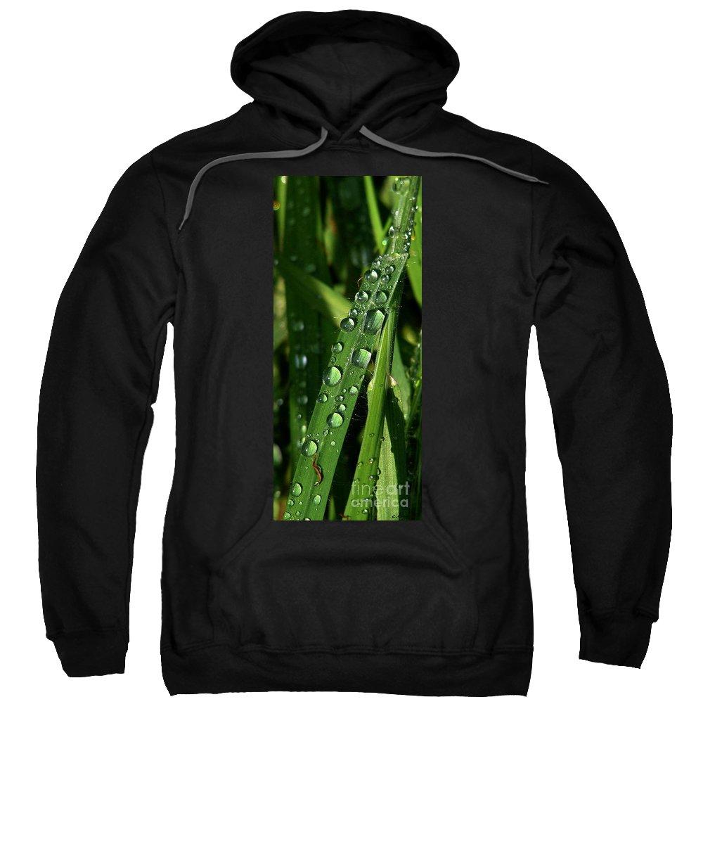 Rain Sweatshirt featuring the photograph Raindrops by Carol Lynch