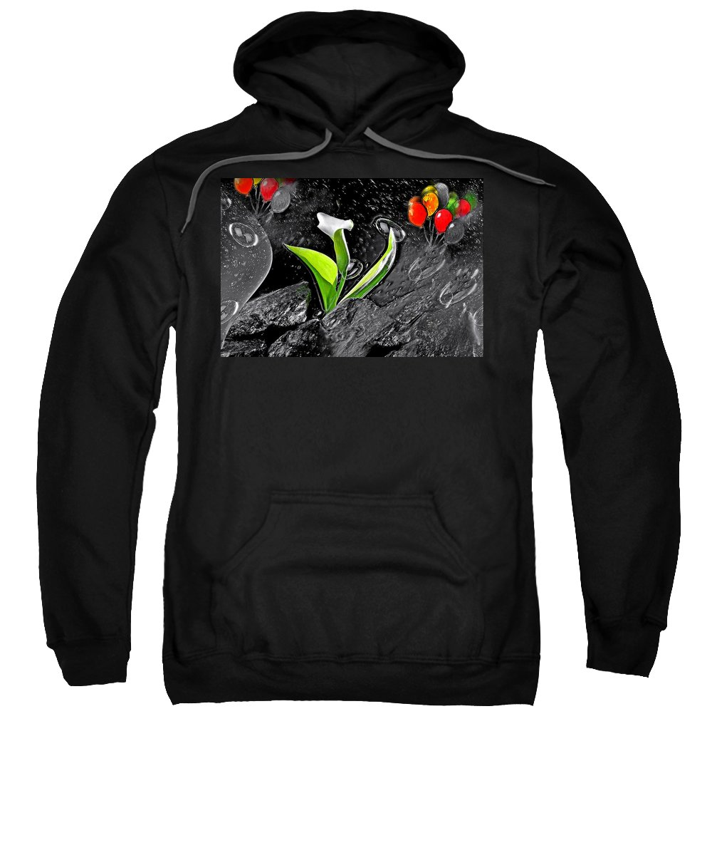 Fly Sweatshirt featuring the photograph Fly by Manfred Lutzius
