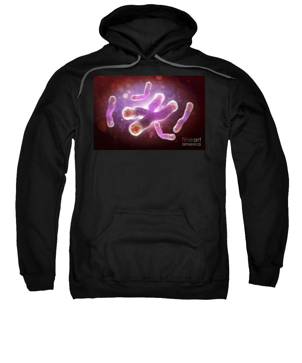 Close Up Sweatshirt featuring the photograph Telomeres by Science Picture Co