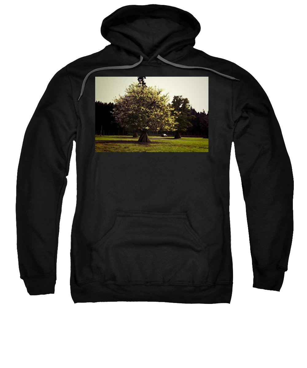 Adventure Park In Scotland Sweatshirt featuring the photograph Tree With Large White Flowers by Ashish Agarwal