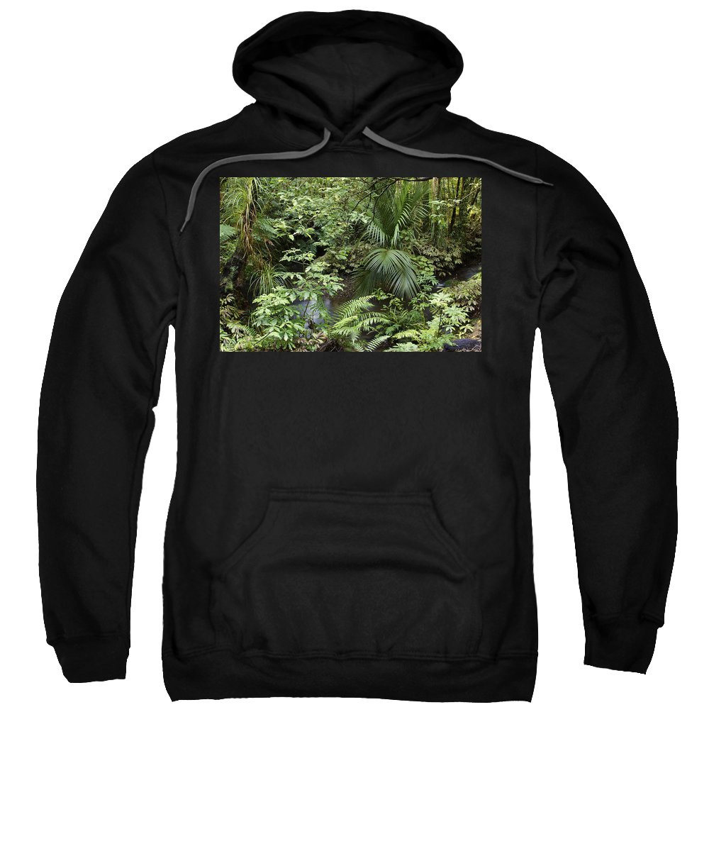 Rain Sweatshirt featuring the photograph Jungle 5 by Les Cunliffe