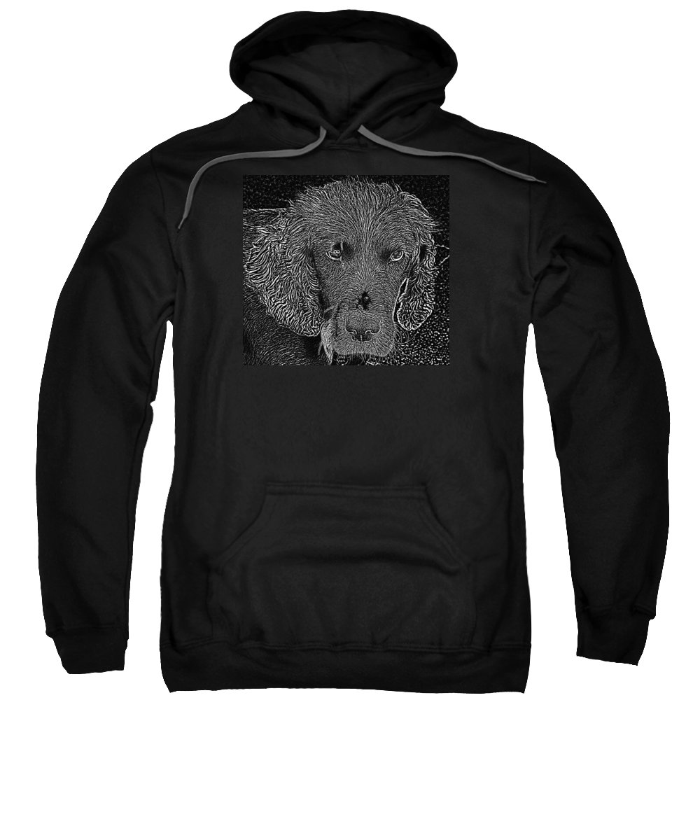 Photographs Of Dogs Sweatshirt featuring the photograph Photogenic by Dave Byrne