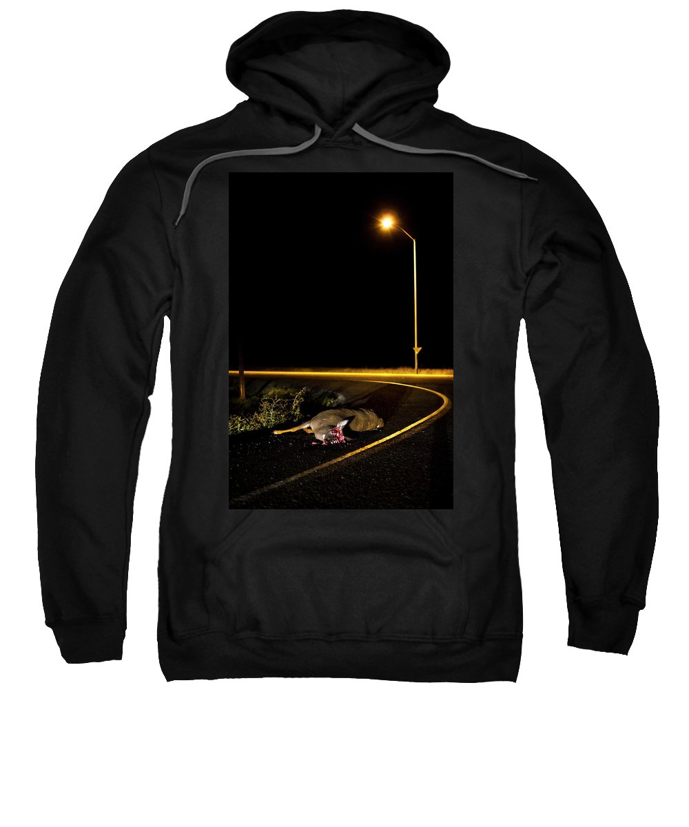Bloody Sweatshirt featuring the photograph A Deer Lies Dead On The Side by Kirk Mastin