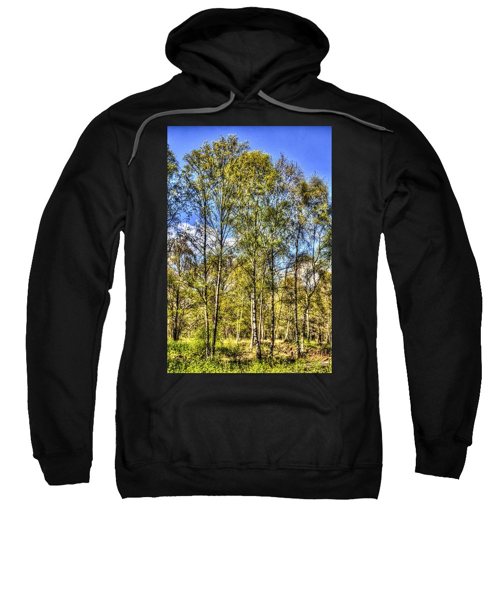 Forest Sweatshirt featuring the photograph A Forest Glade by David Pyatt