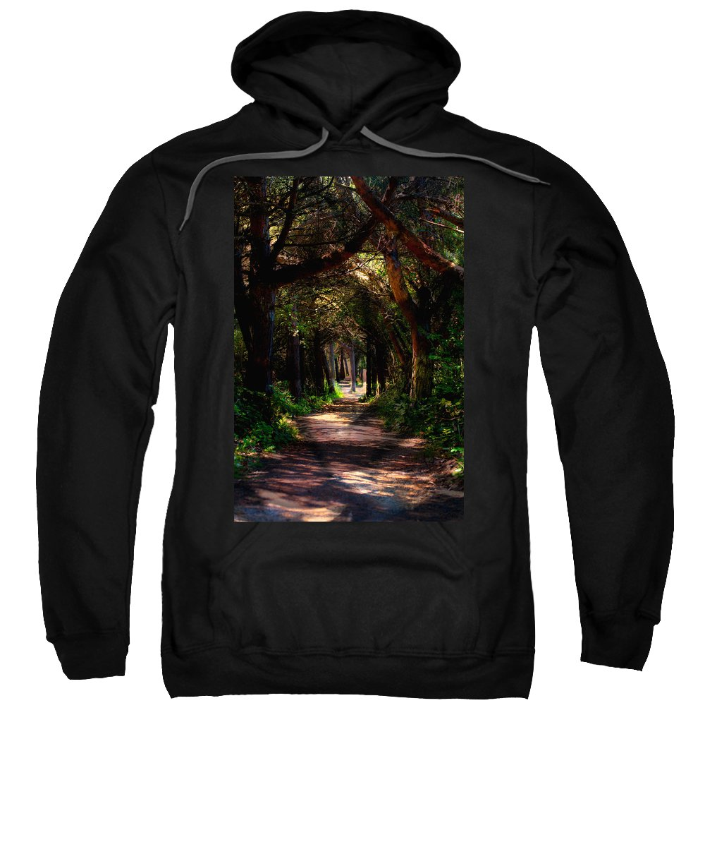 Forest Sweatshirt featuring the photograph A Forest Path -dungeness Spit - Sequim Washington by Marie Jamieson