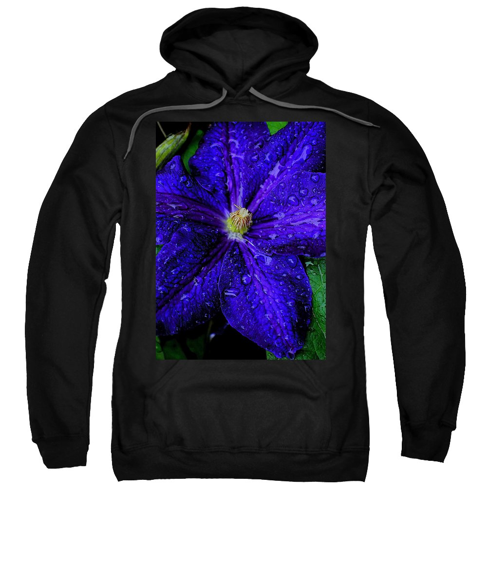 Flower Sweatshirt featuring the photograph A Gentle Rain by Frozen in Time Fine Art Photography