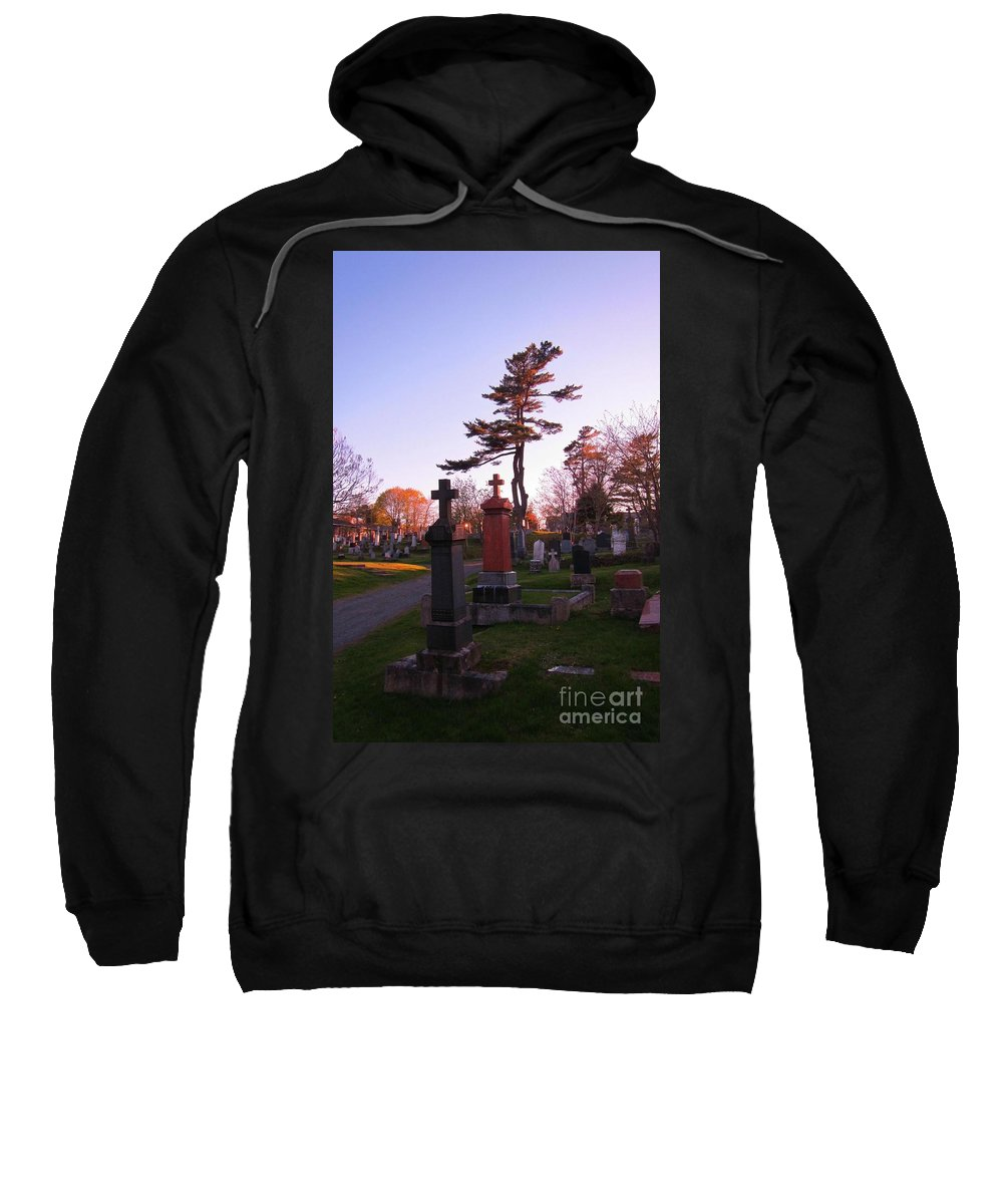 A Tree Dances There Sweatshirt featuring the photograph A Tree Dances There by John Malone