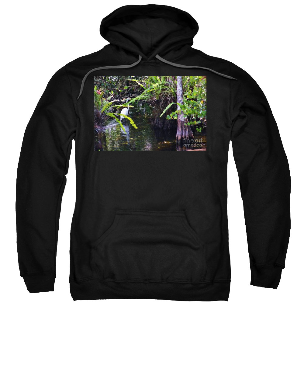 Glades Sweatshirt featuring the photograph A Walk In The Glades by Chuck Hicks