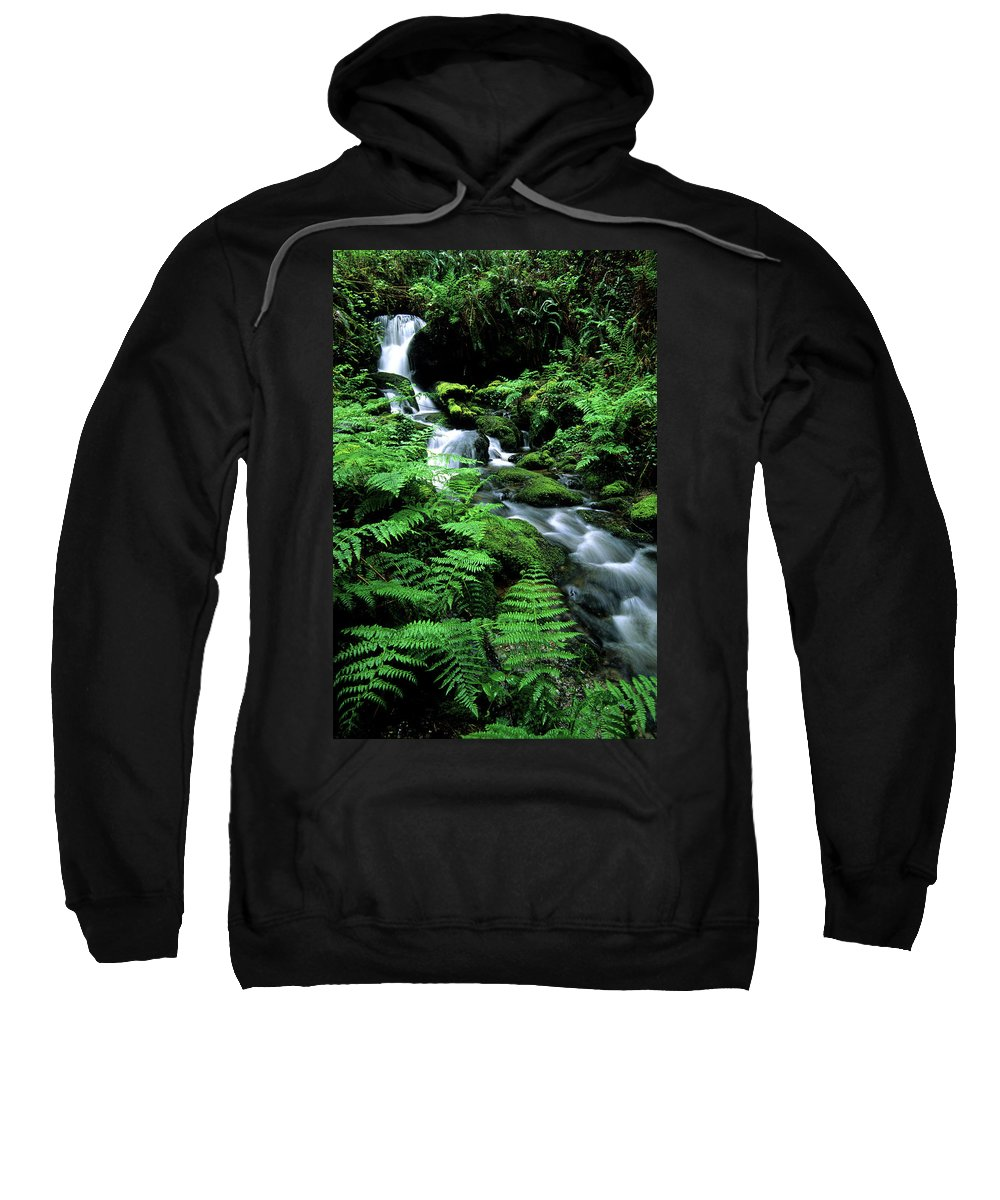Beauty Sweatshirt featuring the photograph A Waterfall In Redwood National Park by Bennett Barthelemy