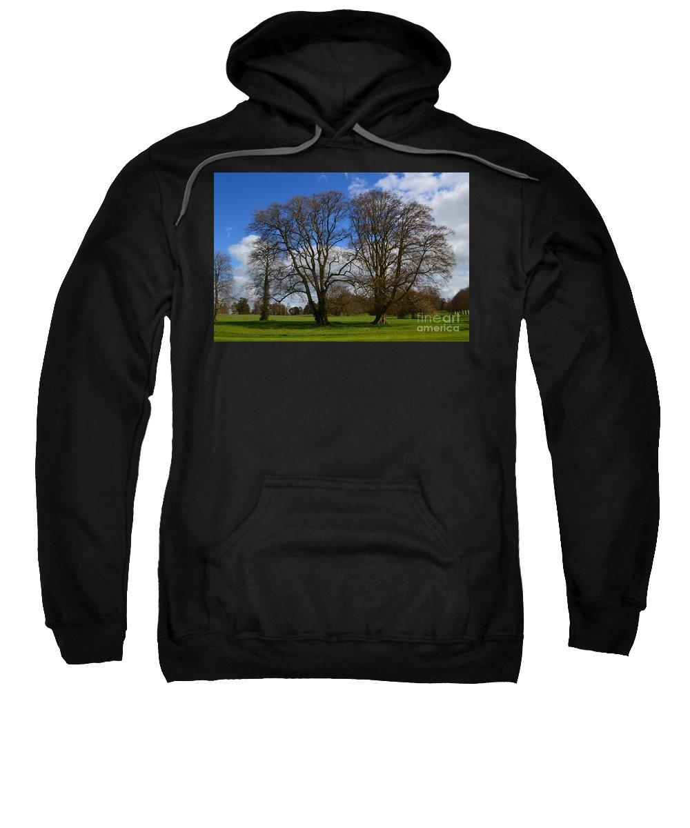 Irieland Sweatshirt featuring the photograph Adare Manor Grounds by DejaVu Designs