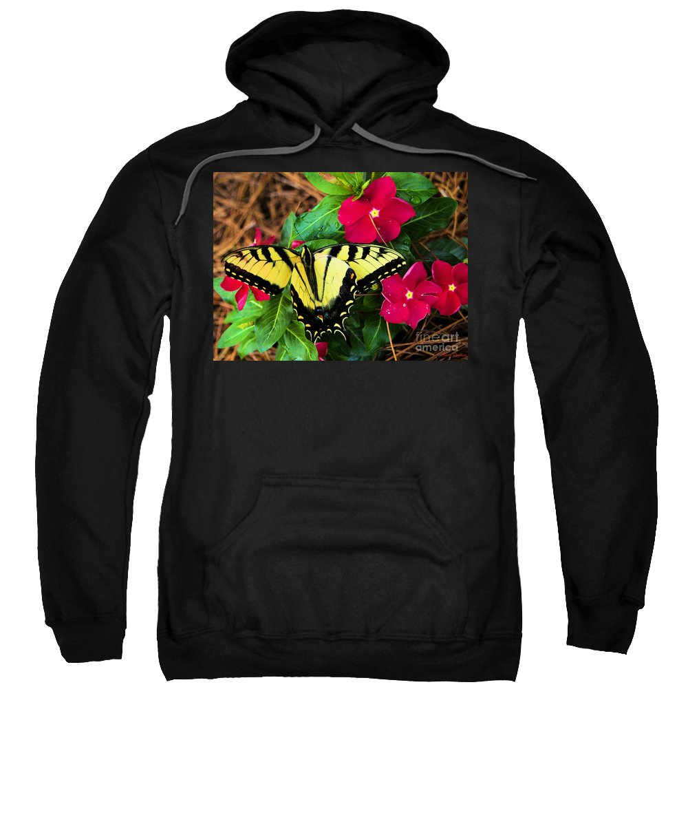 After A Rain Sweatshirt featuring the photograph After A Rain by Karry Degruise