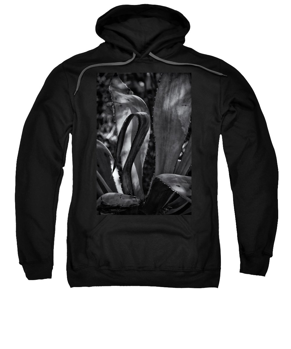 Agave Sweatshirt featuring the photograph Agave Black And White Dsc08571 by Greg Kluempers