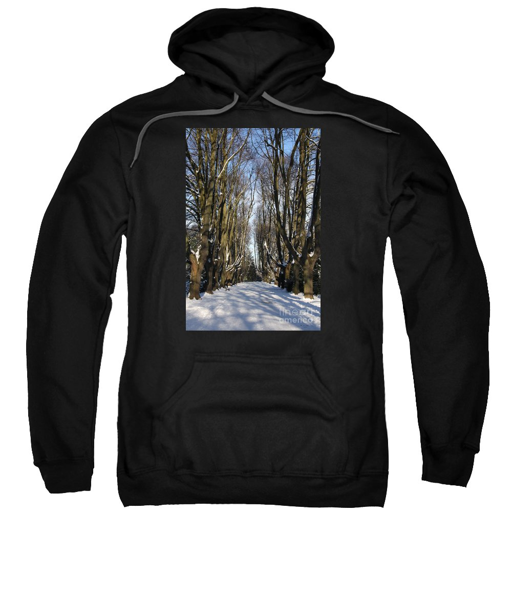 Trees Sweatshirt featuring the photograph Alley In The Snow by Christiane Schulze Art And Photography