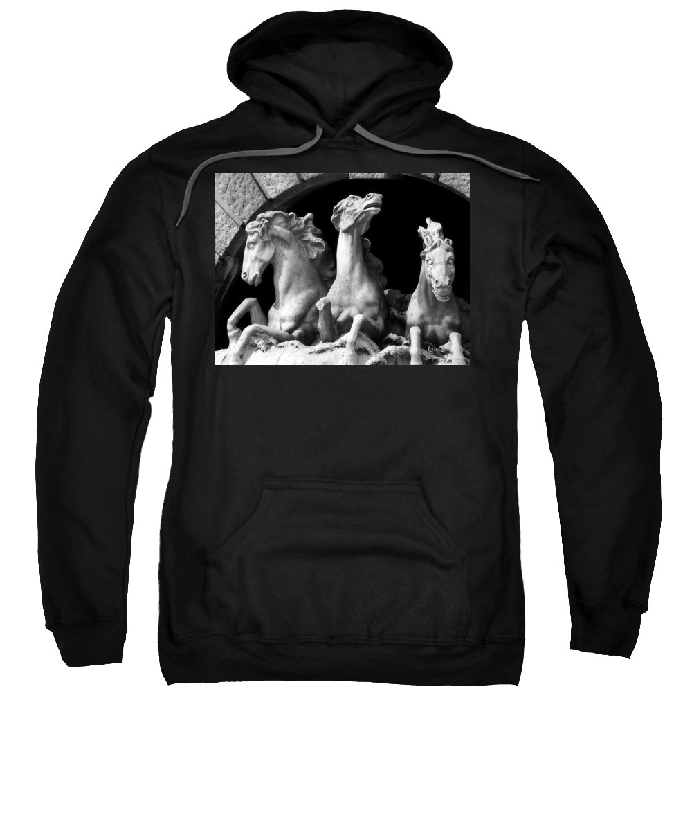 Sculpture Sweatshirt featuring the pyrography Almost Perfect by RC DeWinter
