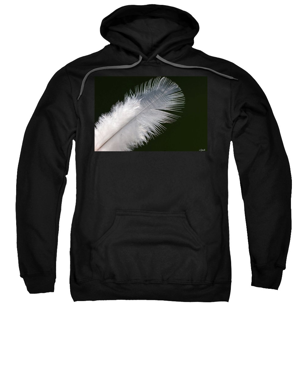 Angel Sweatshirt featuring the photograph Angel Feather by Carol Lynch