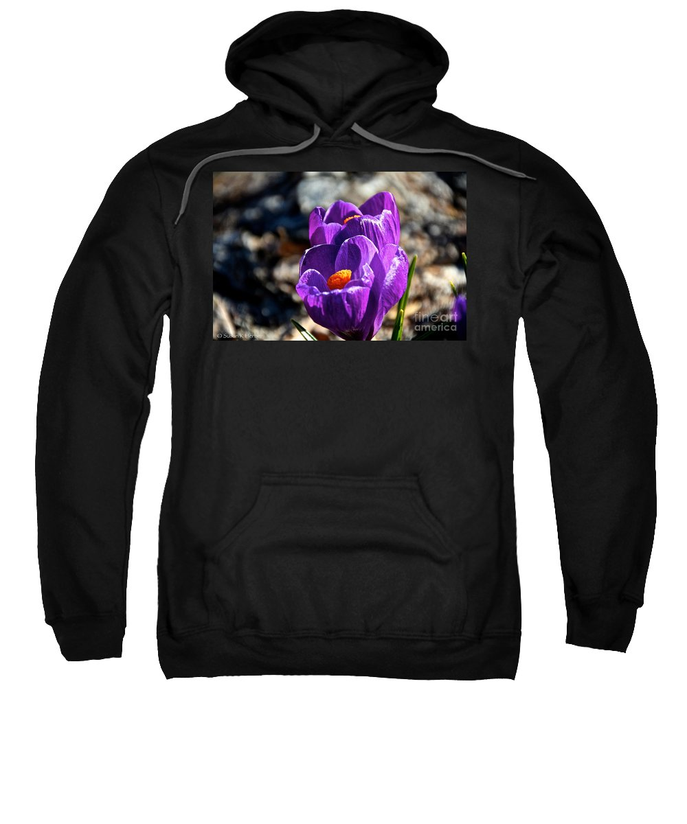 Flower Sweatshirt featuring the photograph April Crocus' by Susan Herber
