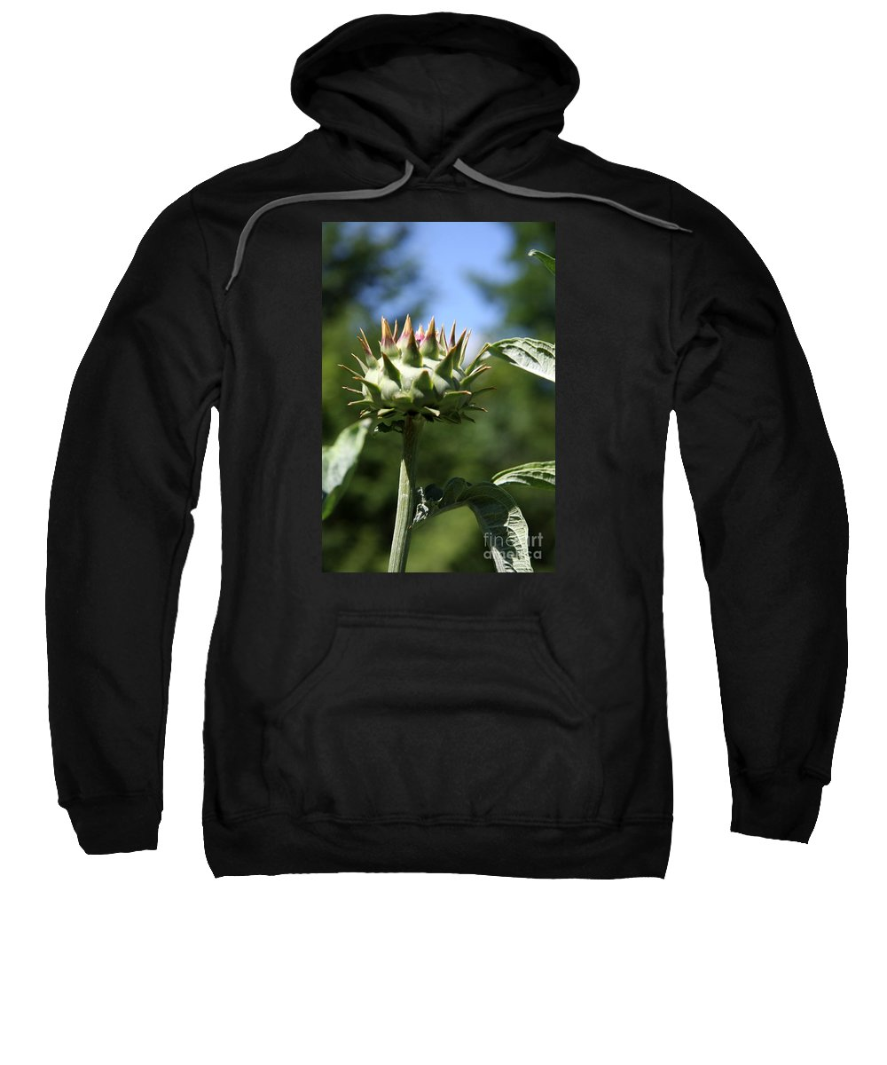 Artichoke Bud Sweatshirt featuring the photograph Artichoke Bud by Christiane Schulze Art And Photography