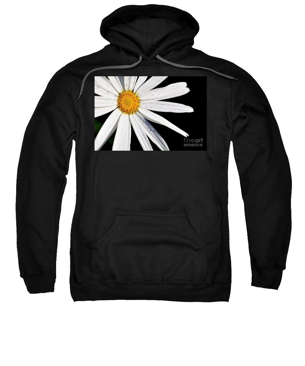 White Daisy Sweatshirt featuring the photograph As Bright As A Daisy... by Kaye Menner