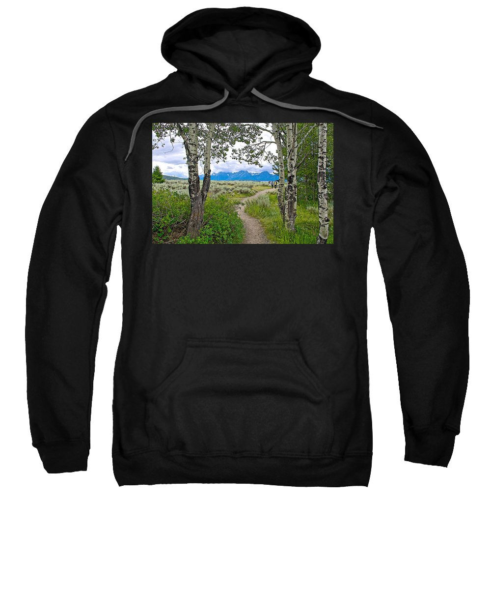 Aspen Trees On Trail To Jackson Lake At Willow Flats Overlook In Grand Teton National Park Sweatshirt featuring the photograph Aspen Trees On Trail To Jackson Lake At Willow Flats Overlook In Grand Teton National Park-wyoming by Ruth Hager