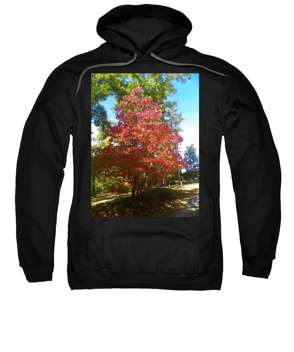 Autumn Leaves Sweatshirt featuring the photograph Autumn Leaves by Lisa Wooten