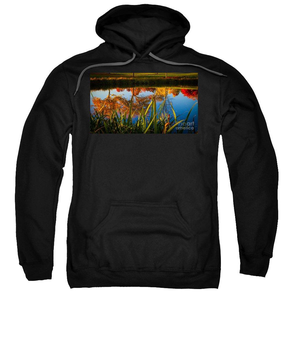 Autumn Sweatshirt featuring the photograph Autumn Reflection by Matt Hoffmann