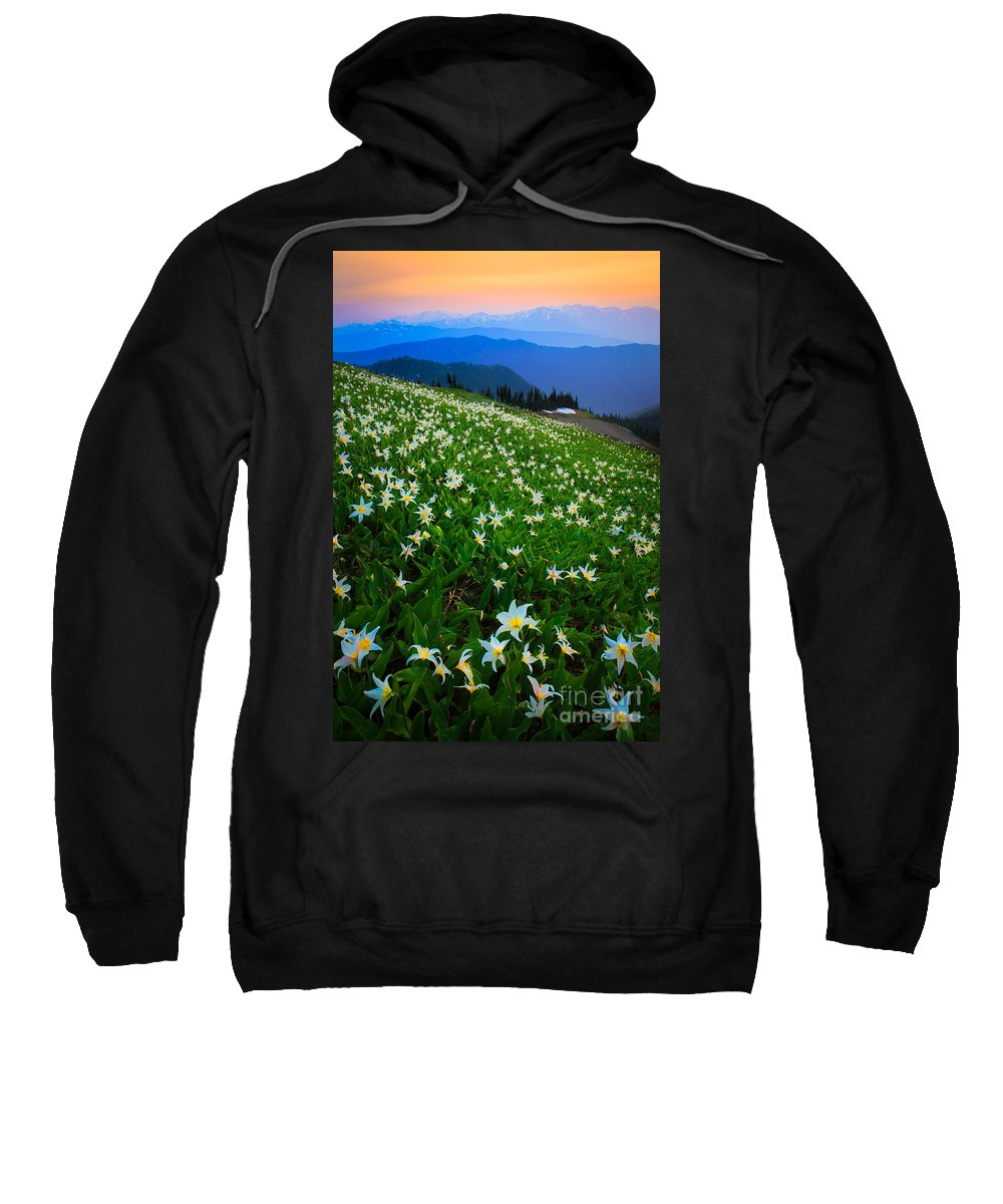 America Sweatshirt featuring the photograph Avalanche Lily Field by Inge Johnsson
