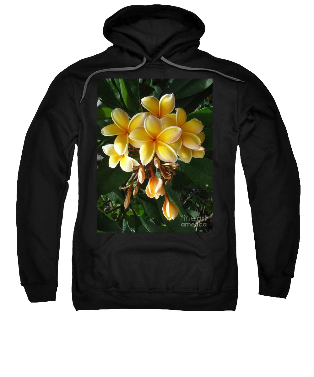 Aztec Gold Sweatshirt featuring the photograph Aztec Gold Plumeria by Mary Deal