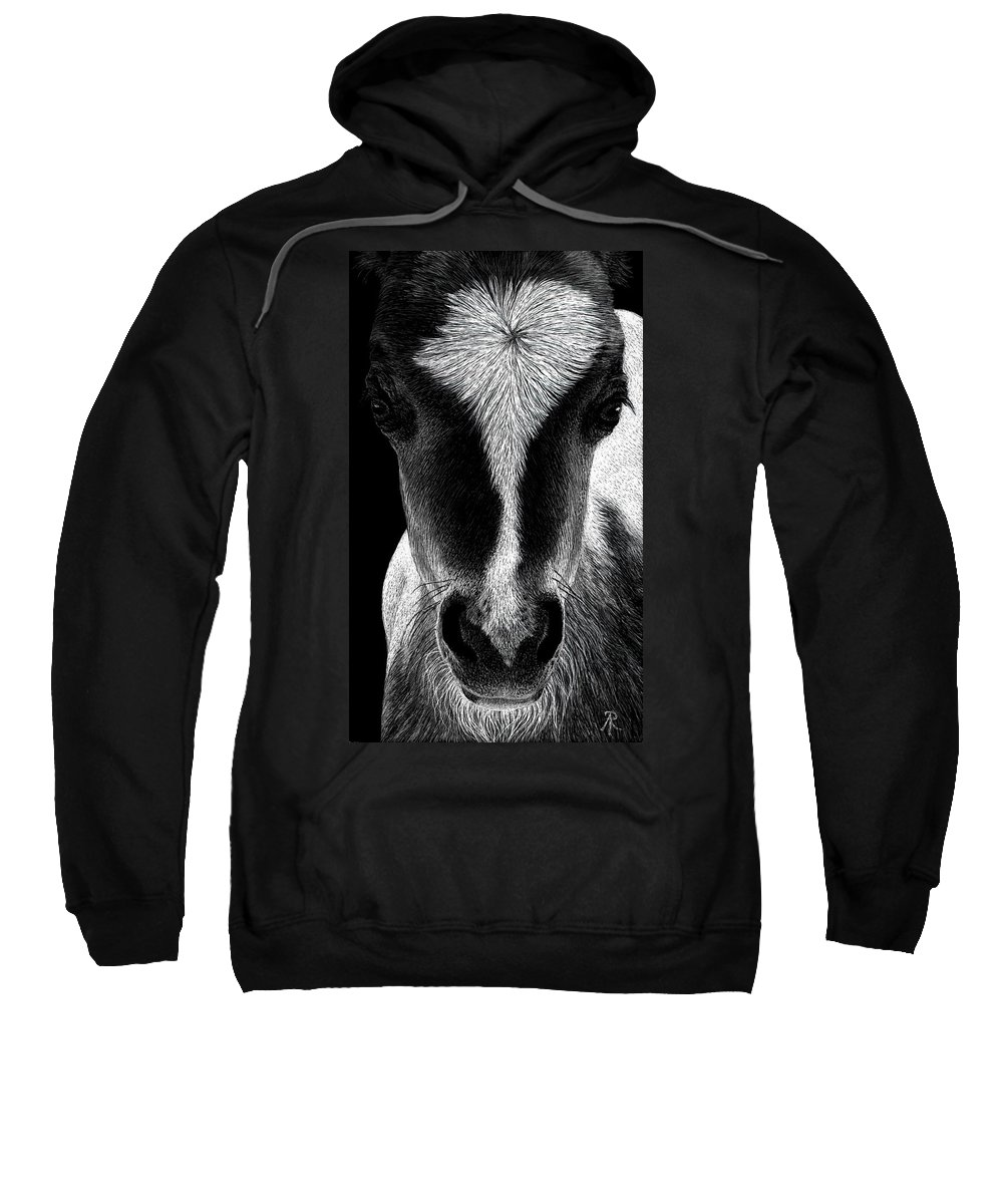 Mini Horse Sweatshirt featuring the drawing Baby Face by Ann Ranlett