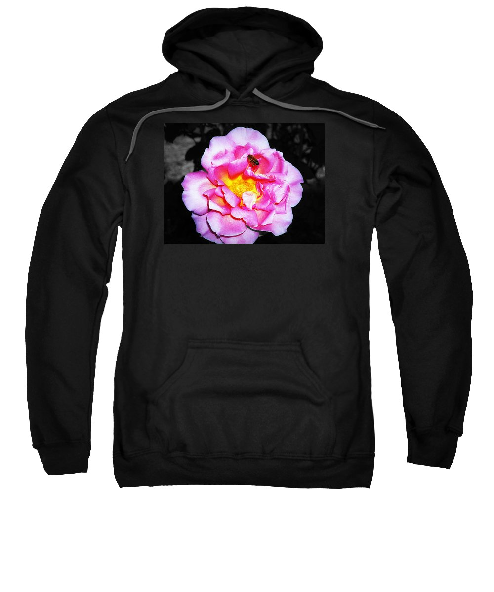 Bee Sweatshirt featuring the photograph Bee Landing by Paul Wilford