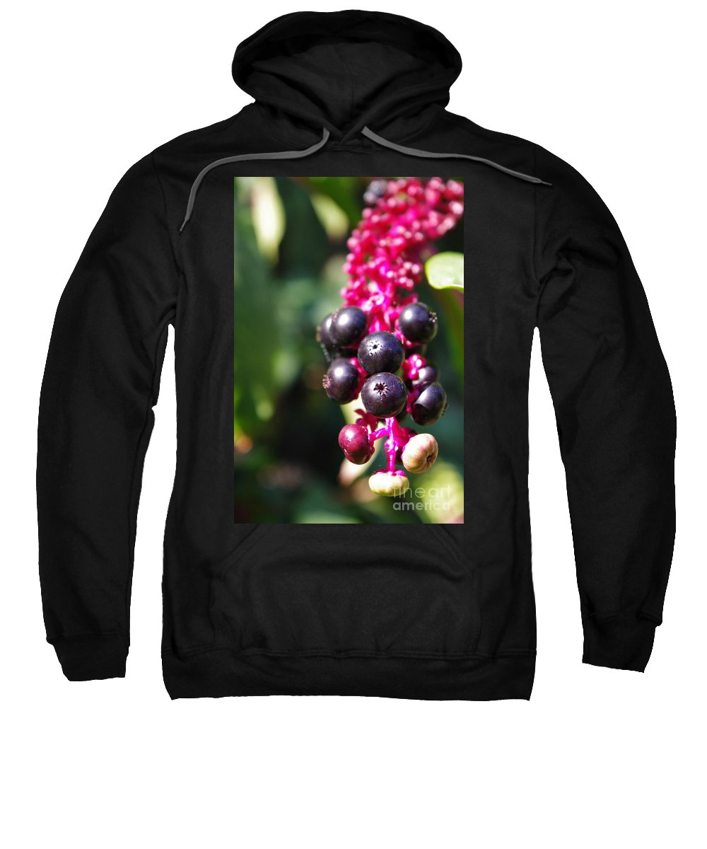 Sweatshirt featuring the photograph Before Bloom by Kara Duffus