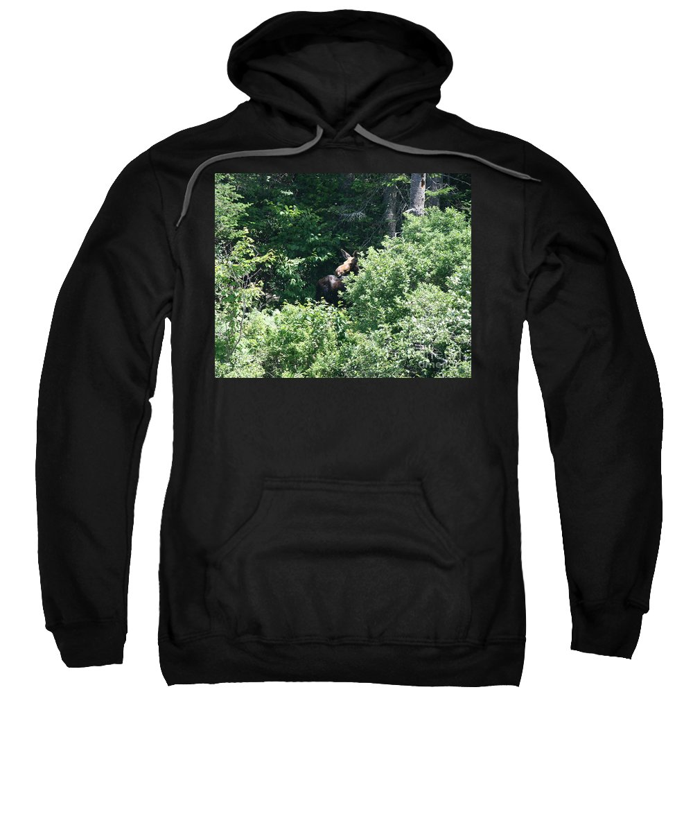 Moose Sweatshirt featuring the photograph Behind The Shrubs by Neal Eslinger